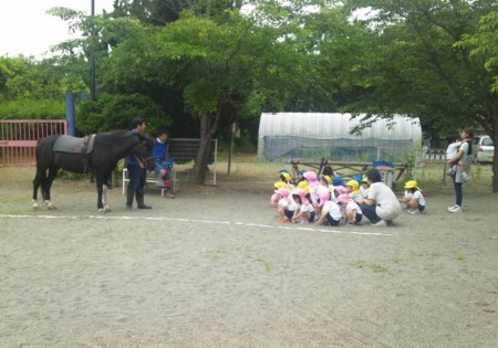 f:id:tsuchiura:20130611100916j:image