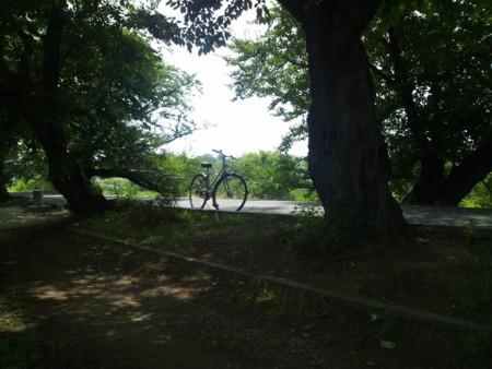 f:id:tsuchiura:20130712105450j:image