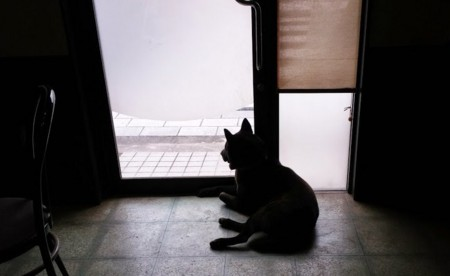 f:id:tsuchiura:20141220090901j:image