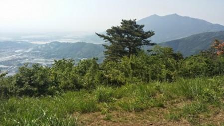 f:id:tsuchiura:20150516000147j:image