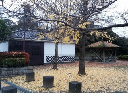 f:id:tsuchiura:20161123223918j:image