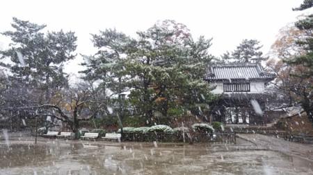 f:id:tsuchiura:20161124224041j:image