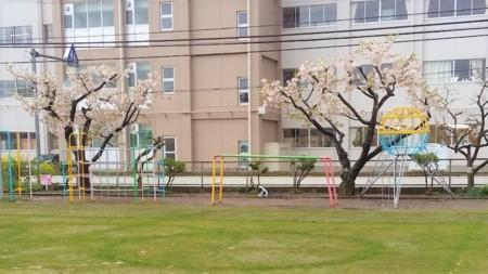 f:id:tsuchiura:20170411181929j:image