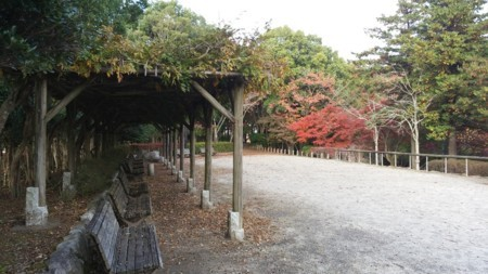 f:id:tsuchiura:20171115221507j:image