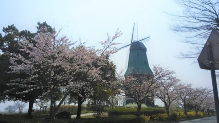 f:id:tsuchiura:20180328220432j:image