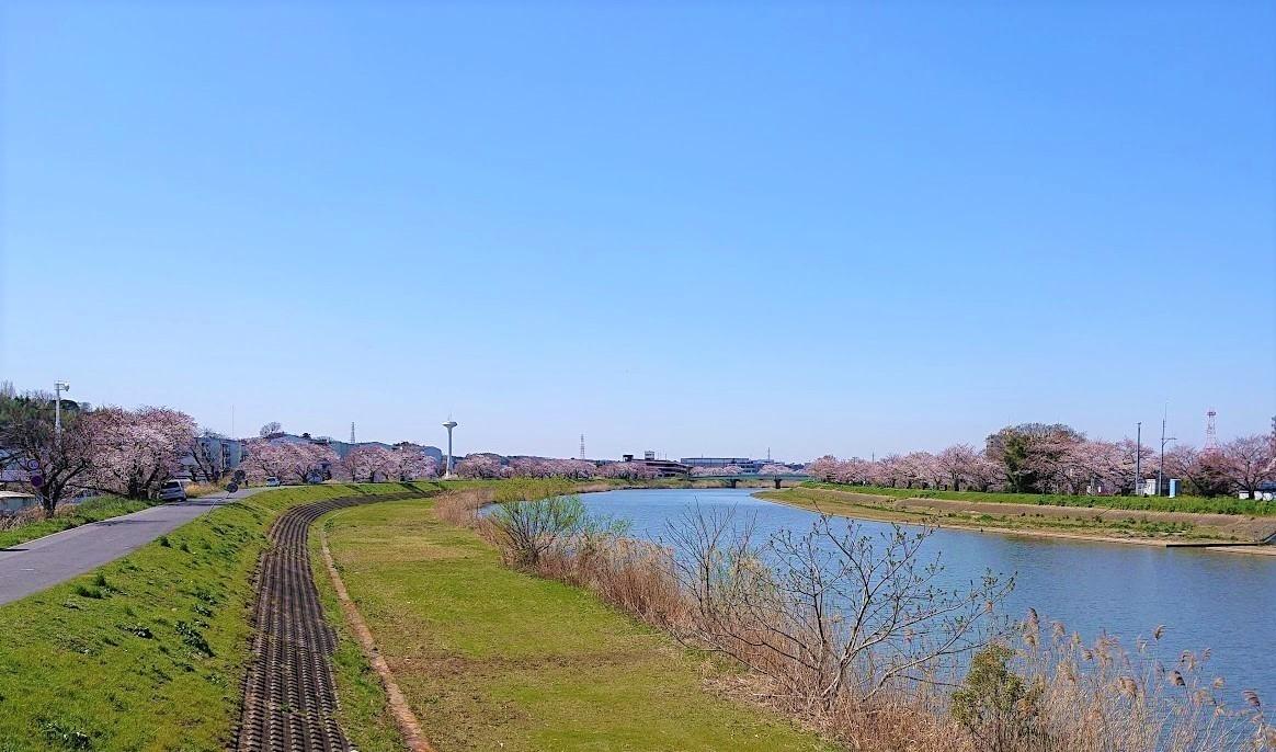 f:id:tsuchiura:20200325174703j:plain