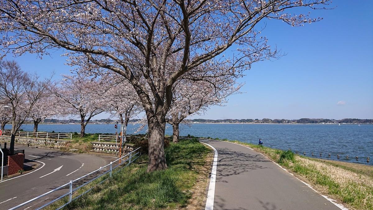 f:id:tsuchiura:20200325190814j:plain