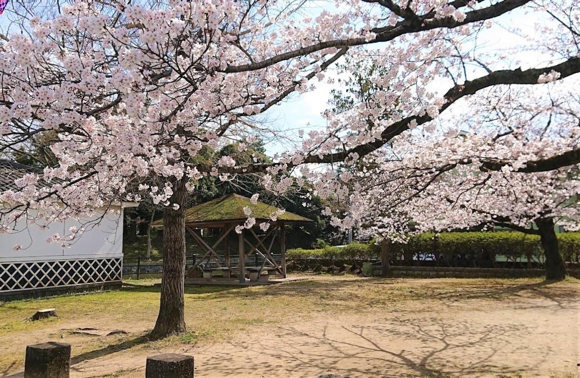 f:id:tsuchiura:20200327165201j:plain