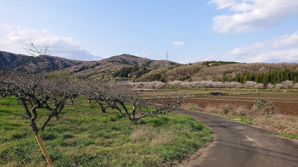 f:id:tsuchiura:20200402181638j:plain