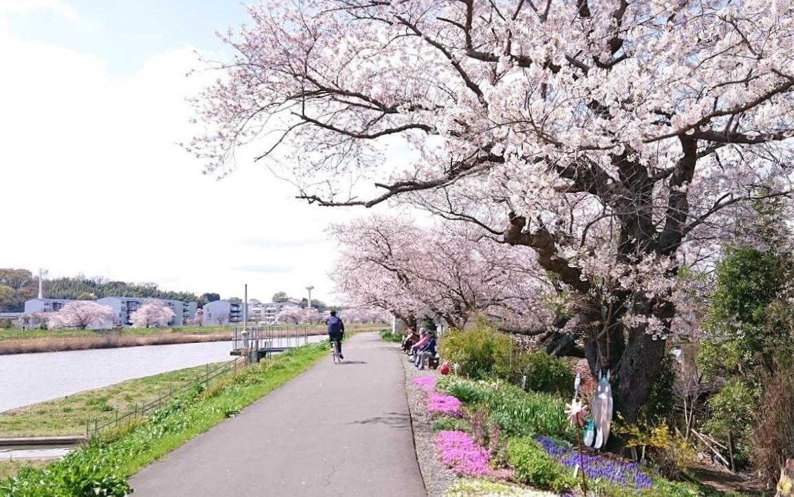 f:id:tsuchiura:20210329173110j:plain