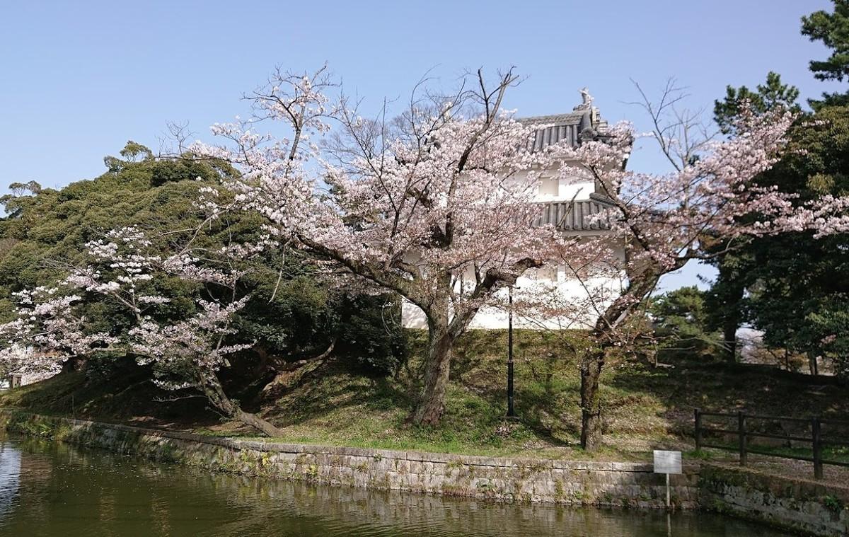 f:id:tsuchiura:20210331174403j:plain