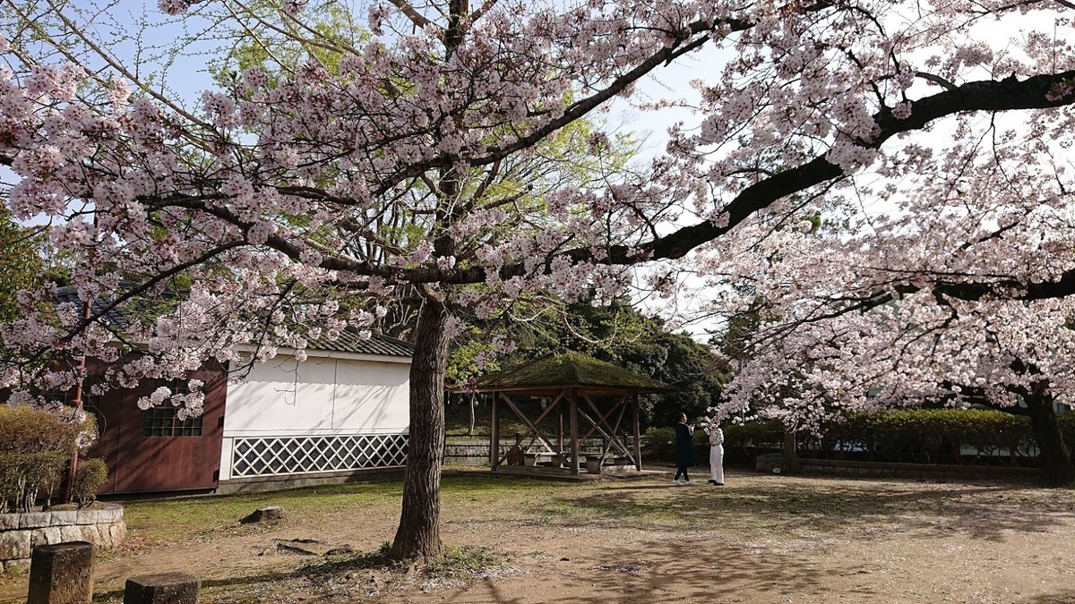 f:id:tsuchiura:20210405220830j:plain