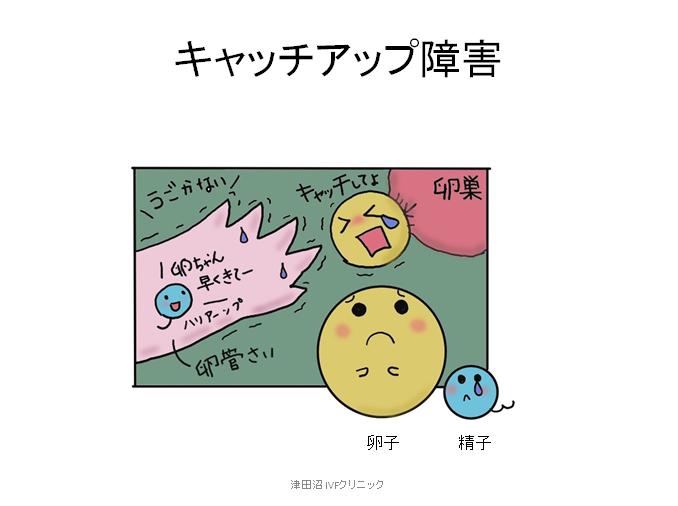 f:id:tsudanuma_ivf_clinic:20210414151302p:plain