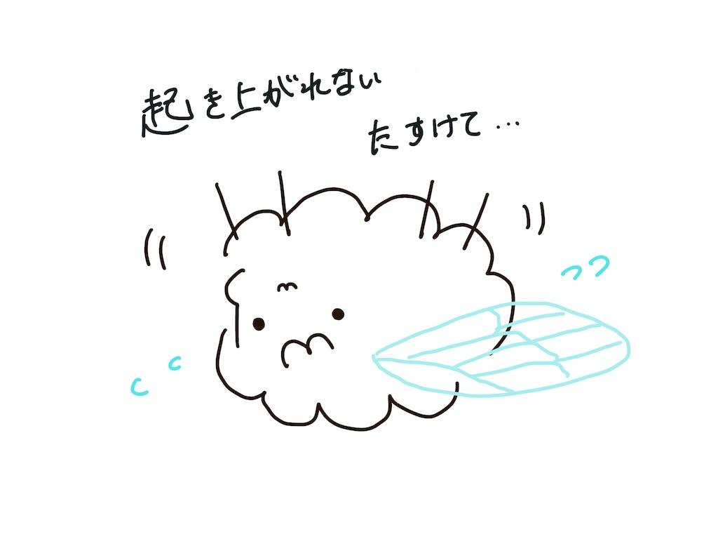 f:id:tsuikannashiko:20190110212703j:image