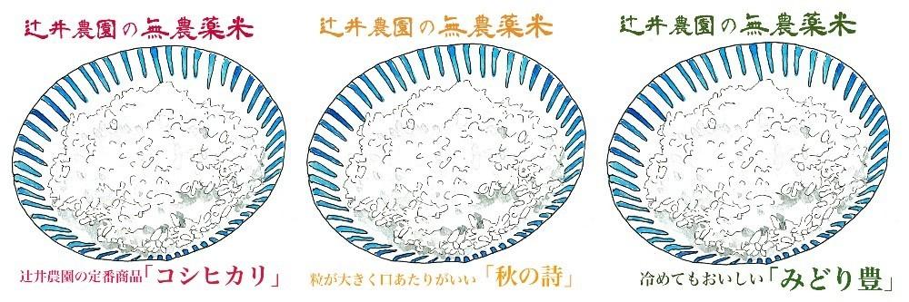 f:id:tsujii_hiroaki:20201128215001j:plain