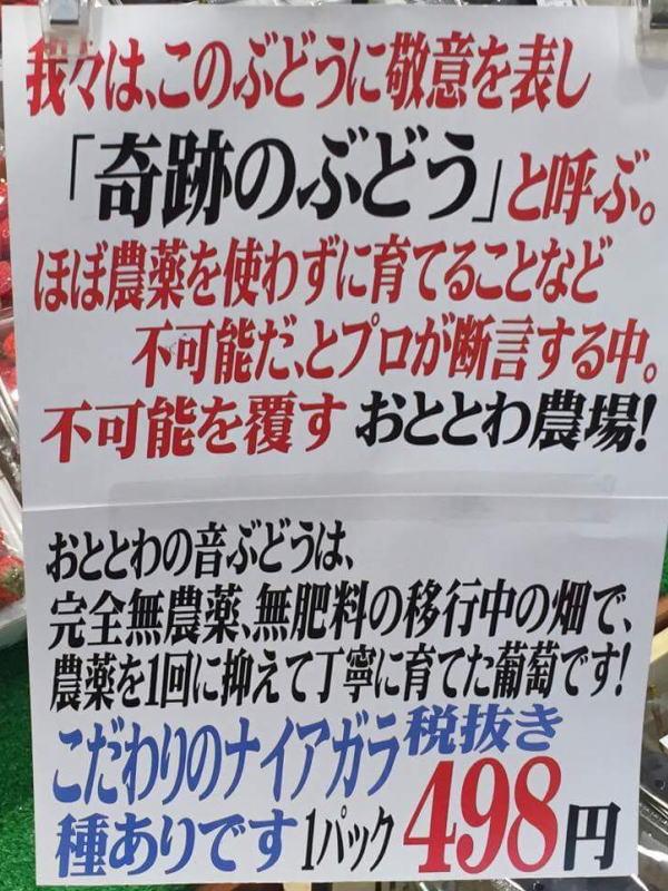 f:id:tsukachan330:20160820224153j:plain