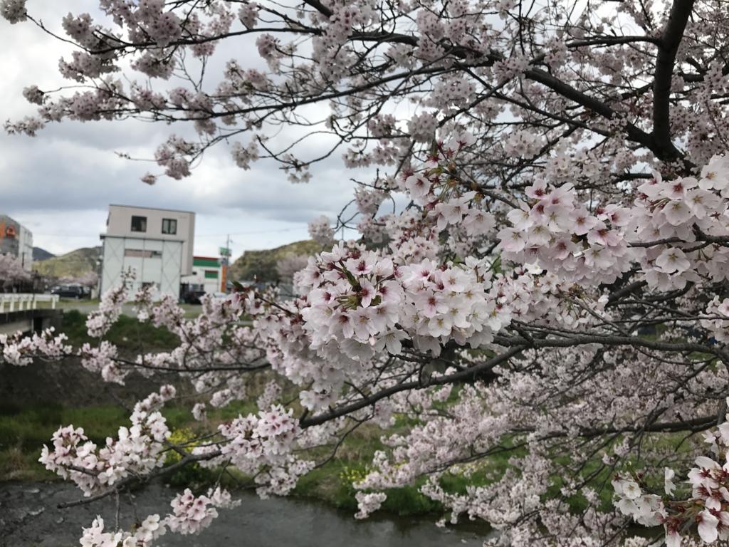 f:id:tsukachan330:20170412233110j:plain
