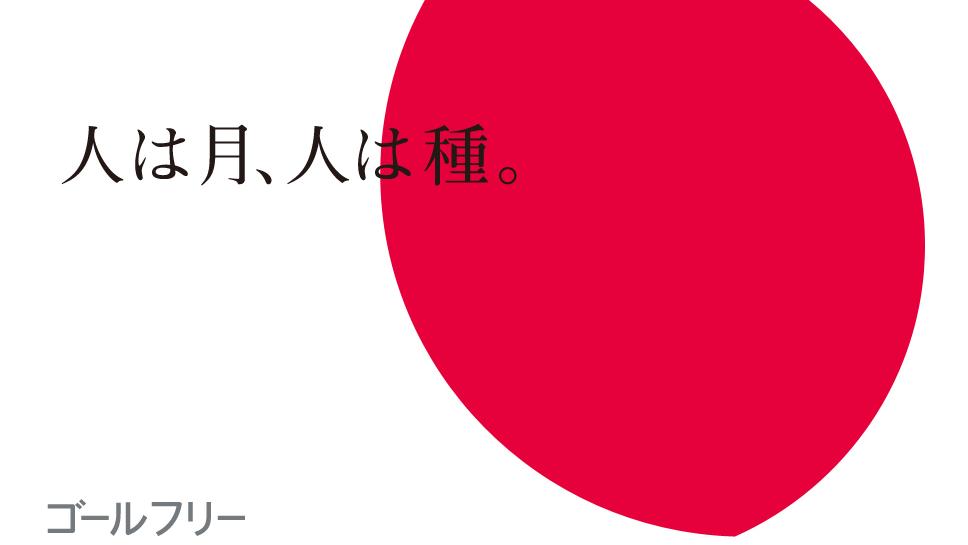 f:id:tsukarukatamade:20200103181641p:plain
