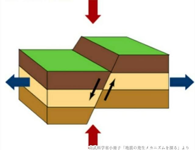 f:id:tsukasa-fp:20190307200548j:plain