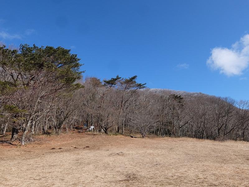 f:id:tsukasa-hide:20200105180841j:plain