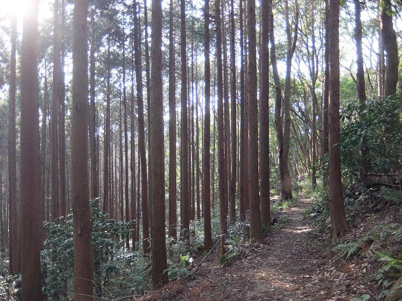 f:id:tsukasa-hide:20200202205455j:plain