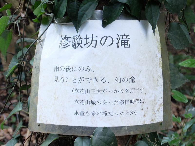 f:id:tsukasa-hide:20200202213135j:plain