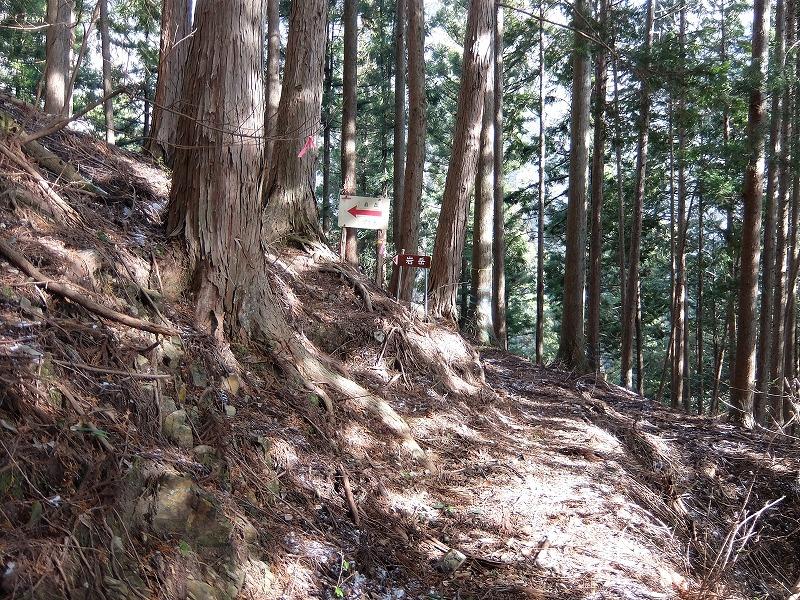 f:id:tsukasa-hide:20200210220815j:plain