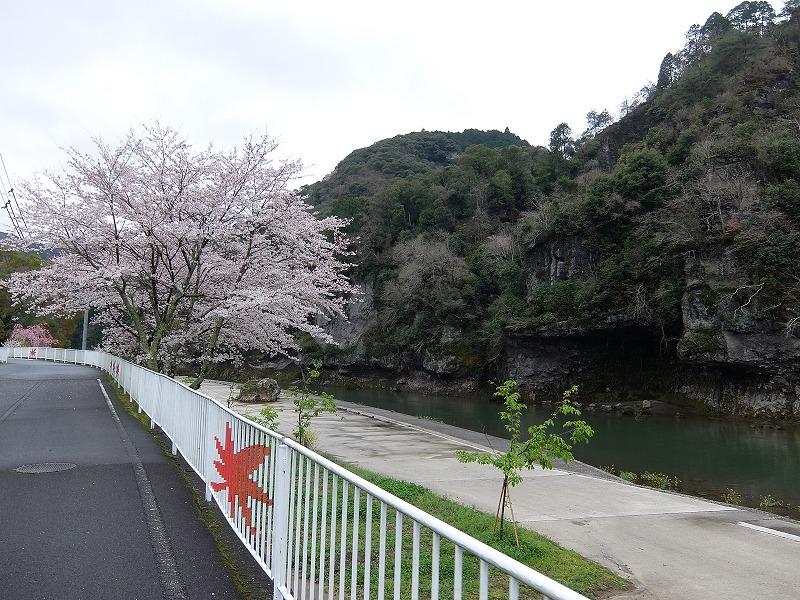 f:id:tsukasa-hide:20200330125925j:plain