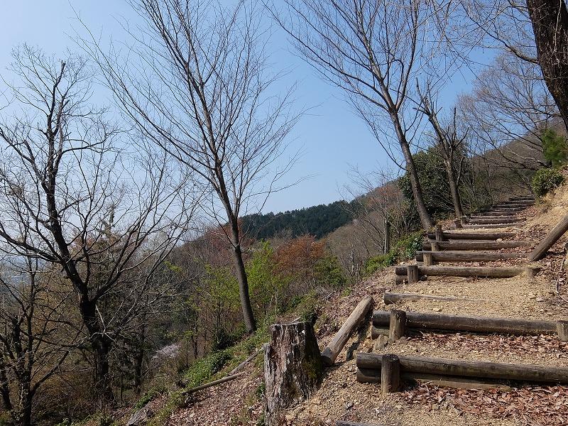 f:id:tsukasa-hide:20200405125903j:plain
