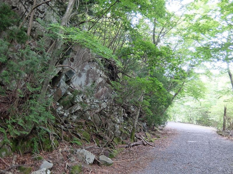 f:id:tsukasa-hide:20200531185933j:plain