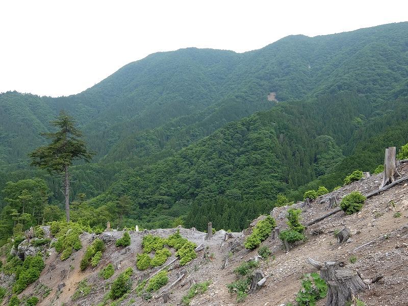 f:id:tsukasa-hide:20200609172321j:plain