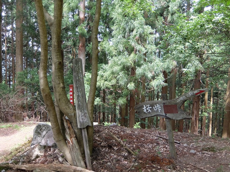 f:id:tsukasa-hide:20200609172451j:plain