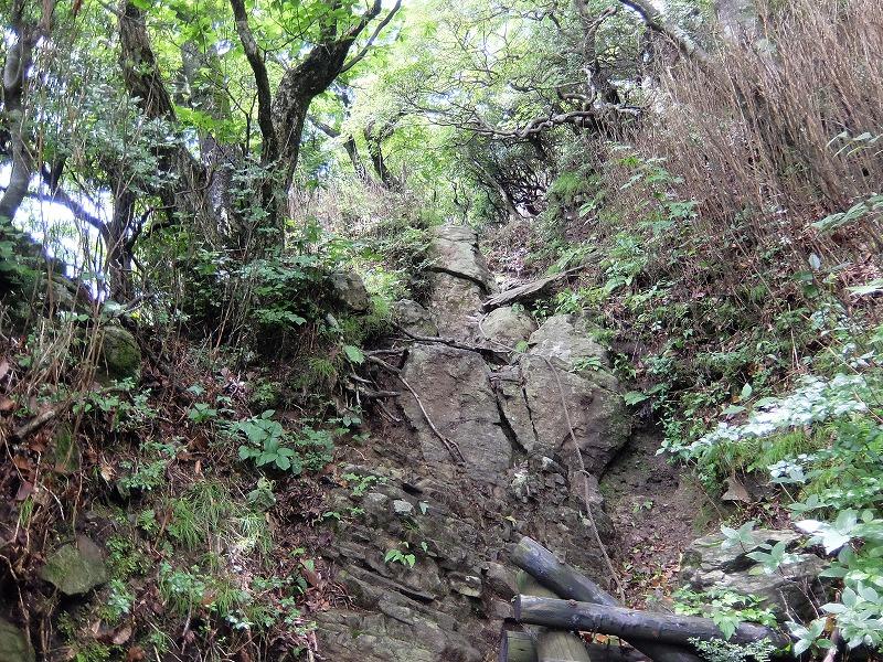 f:id:tsukasa-hide:20200622205133j:plain