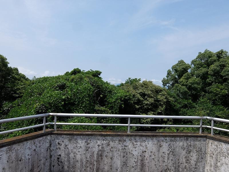 f:id:tsukasa-hide:20200628182642j:plain