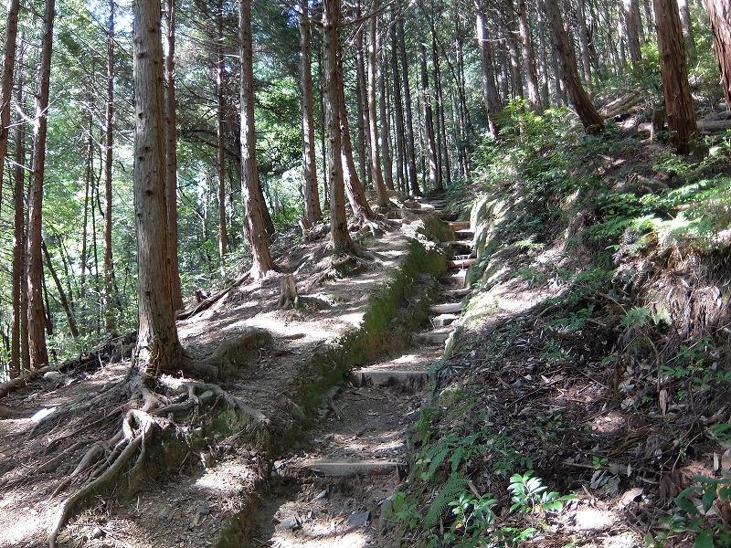 f:id:tsukasa-hide:20201023205606j:plain