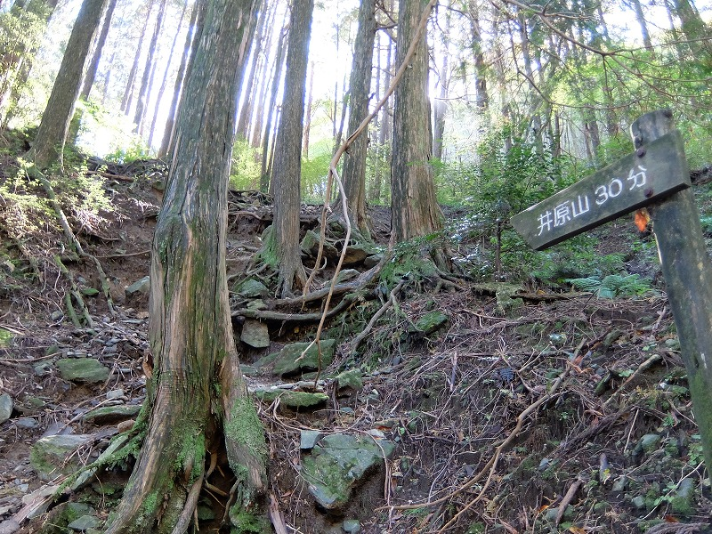 f:id:tsukasa-hide:20201025203432j:plain