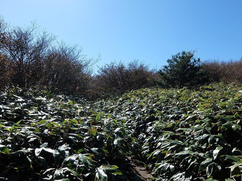 f:id:tsukasa-hide:20201025203521j:plain