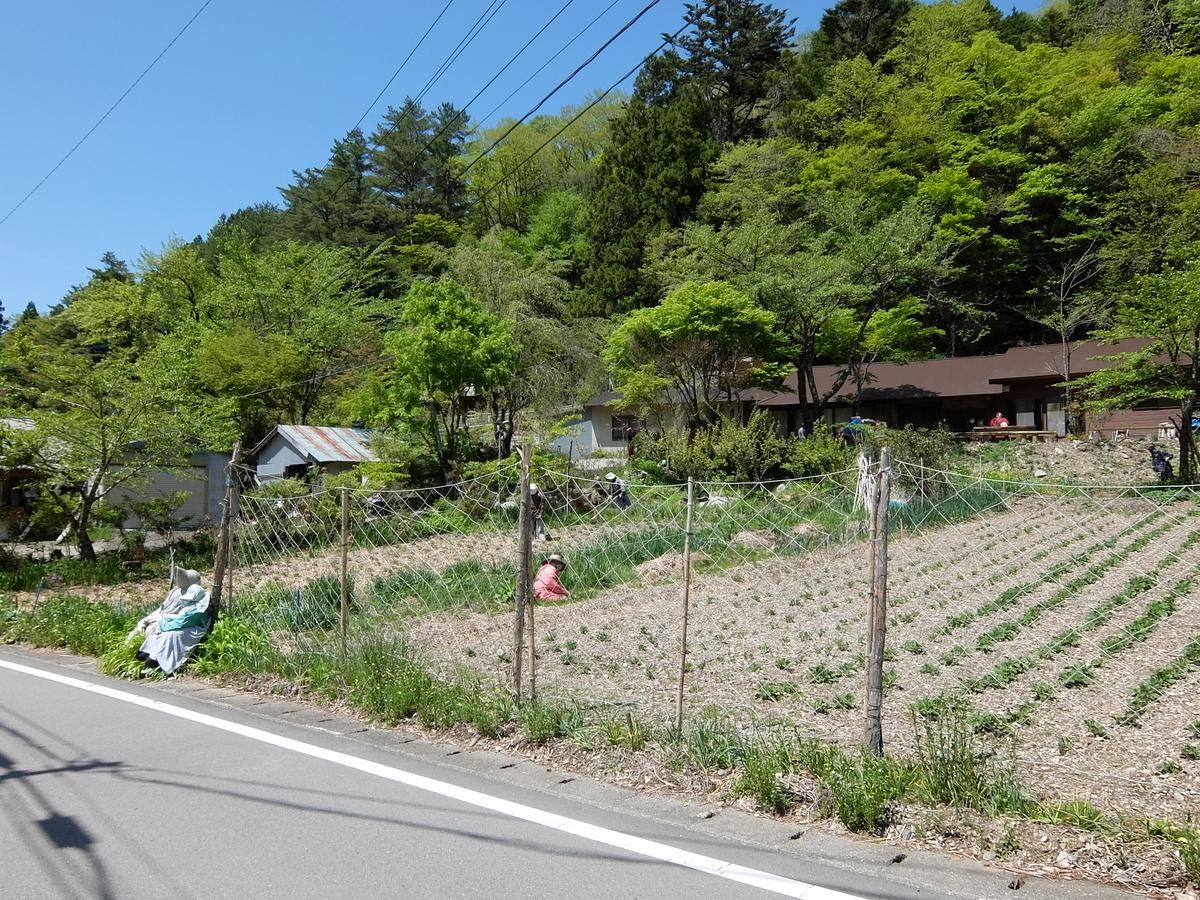 f:id:tsukasa-hide:20210507070550j:plain