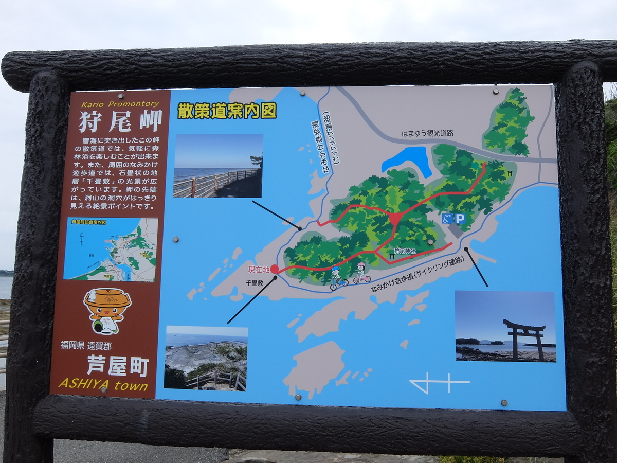 f:id:tsukasa-hide:20210605173310j:plain