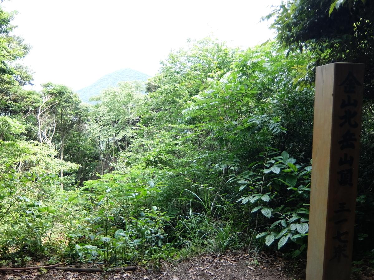 f:id:tsukasa-hide:20210607201712j:plain