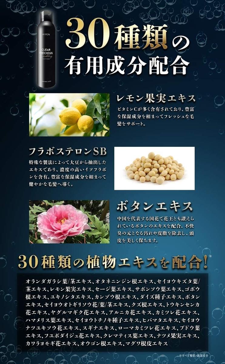 f:id:tsukasamochi:20201112033922j:plain