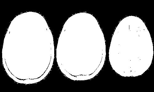 f:id:tsukasaseikatsu:20170125082535p:plain