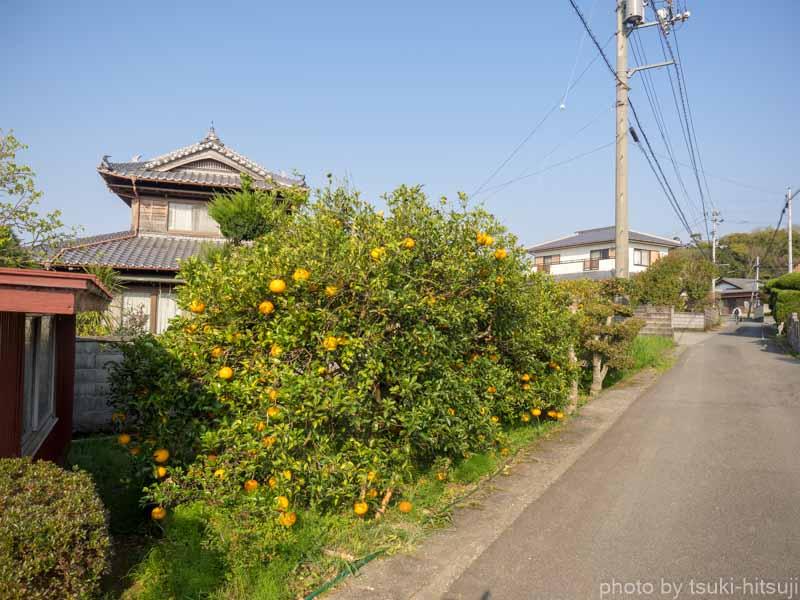 f:id:tsuki-hitsuji:20190318214558j:plain