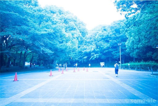 f:id:tsuki_neko:20180730183545j:image