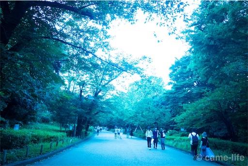 f:id:tsuki_neko:20180730183559j:image