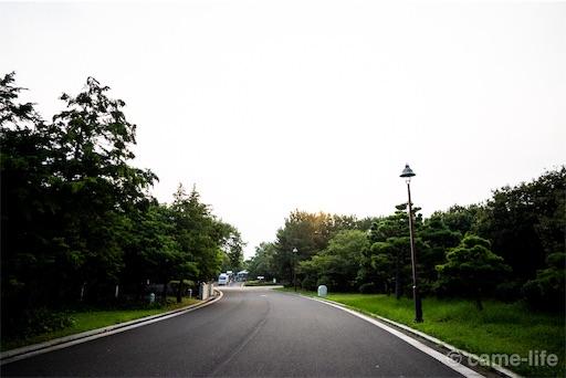 f:id:tsuki_neko:20180804191348j:image