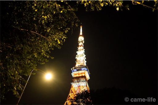 f:id:tsuki_neko:20180808184037j:image