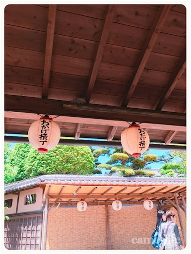 f:id:tsuki_neko:20180811195546j:image