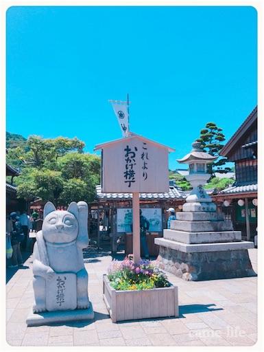 f:id:tsuki_neko:20180811195550j:image