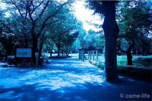 f:id:tsuki_neko:20180816160617j:image